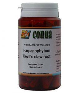 Douleurs et confort articulaires racine Harpagophytum procumbens extra fort griffe du diable ou Devil's claw retrouvez mobilité et souplesse articulaire flex 120 gélules forte articulations douloureuses harpago