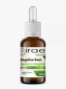 Racine de l'angélique Angelica archangelica 1:2 25% Alc Herb liquide 125ml
