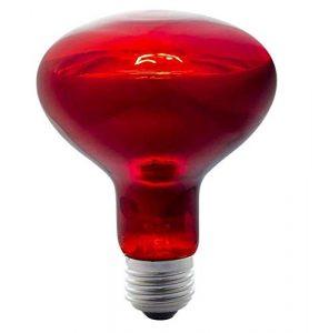 Eeayyygch Lampe Infrarouge Ampoule de Cuisson 275w, Set (coloré : -, Taille : Bulb)
