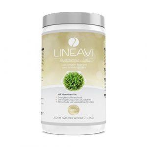 Herbe de blé en poudre LINEAVI | issu de jeunes feuilles, herbe de blé en qualité crudités| fabriqué en Allemagne | idéalpour les smoothies verts| 400 g