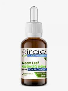 Feuilles de neem Azadirachta indica sans alcool à spectre complet extrait liquide 30ml