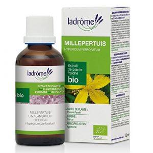 Millepertuis Extrait Plante Fraîche Bio Eco – Flacon 100 ml