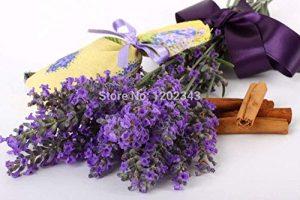 Vistaric 50pcs 100% genuino de lavanda fresca semillas de flores de color púrpura semillas de plantas