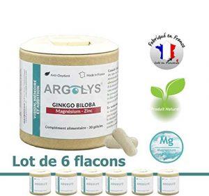 Lot de 6 ● Argolys® Vision, Mémoire et Audition, les compléments alimentaires créés par S&B Provence – Magnésium Marin, Ginkgo Biloba et Zinc