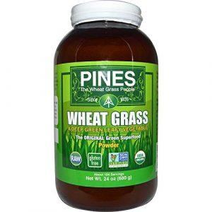 Pines International Wheat Grass Powder, 24 Ounce