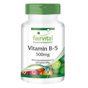 Vitamine B5 500mg – Acide Pantothénique – Végan – Hautement dosé – 60 gélules – ! Boite pour 2 mois !