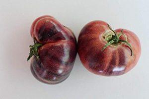 Farmerly Stunning Ozark Sunset Tomato 40+ Fresh 2017 Seeds