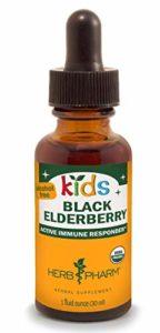 Enfants, Noir sureau, sans alcool, 1 fl oz (30 ml) – Herb Pharm
