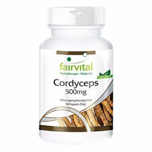 Cordyceps 500mg – 1 mois – végan – dosage élevé – 90 capsules – Cordyceps sinensis – champignon chenille