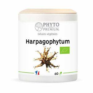 PHYTOPREMIUM Harpagophytum Racine Bio 280 mg