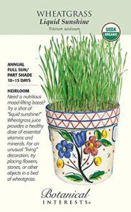 GEOPONICS unhine liquide graines de blé – 50 m – Bio