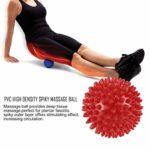 LouiseEvel215 Balle de Massage en épi de Haute densité en PVC Douleur au Pied et Traitement de soulagement de la fasciite Plantaire Balle de hérisson en Boule Balle d'acupression