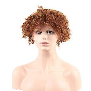 BIN–Hairpieces Postiches Perruque Full Lace Hood Haute densité de Vrais Cheveux tissés à la Main pour Un Usage Quotidien et fête (Taille : 26inch)