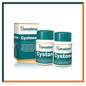 Cystone – Supplément pour infection des voies urinaires et cystite – Prise en charge du traitement des infections urinaires – 840 mg 100 capsules – Produit de l'Himalaya (depuis 1930) (2-Pack)