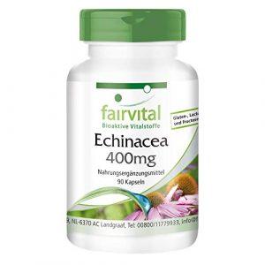 Echinacea 400mg – 1 mois – végan – dosage élevé – 90 capsules – Echinacea purpurea