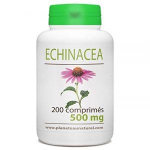 Echinacéa – 500 mg – 200 comprimés