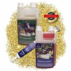 EMMA Muskelaufbau Pferd ? I I SPARSET I Aminosäure, Reiskeimöl + Amino Booster I Ergänzungsfutter Für Die Muskulatur I Premiumprodukt
