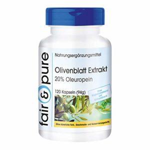 Extrait de feuilles d'olivier – 20% d'oleuropéine – 120 gélules – sans additifs