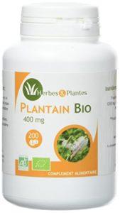 Herbes Et Plantes Plantain Bio 200 Comprimés 400 mg