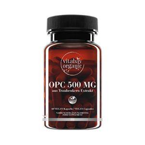 OPC 500 mg Fortement dosé – à partir d'extrait de pépins de raisin – 60 capsules végétaliennes