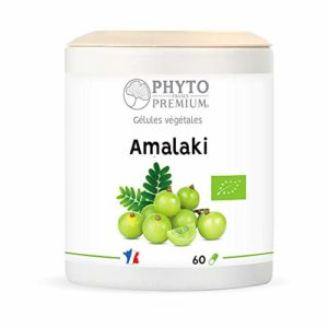 PHYTOPREMIUM Amalaki Phyllantus Emblica Bio 400 mg