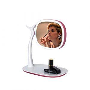 TWDYC Maquillage LED Miroir, Miroir de Bureau avec Lampe, Miroir de Maquillage, Petit Miroir, Simple (Color : Pink)