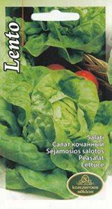 AGROBITS Vegable Lento Sala UE standard Pictorial pack Royaume-Uni