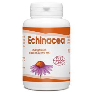 Echinacéa Bio 200 gélules – 210 mg