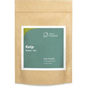 Terra Elements Varech (Kelp) en poudre 250 g I 100% pure I vegan I qualité crue