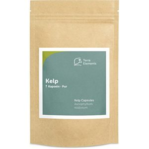 Terra Elements Varech (Kelp) gélules (150 à 400 mg) I 100% pure I vegan I qualité crue