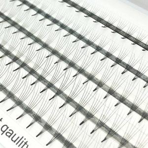Volume 5D Cils Extensions Cluster Russe Cils Individuels Volume Professionnel C Curl Lash Extensions pour la Beauté (VLash-0005)