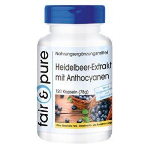 Extrait de mytrille avec anthocyanes – 120 gélules véganes – complément alimentaire de myrtilles – Blueberry extract