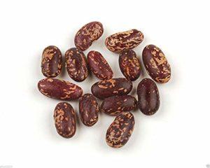 Fash Lady 100 langues de graines de haricot de feu, héritage non-OGM, organiquement cultivées