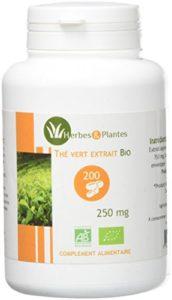 Herbes Et Plantes Thé Vert Bio 200 Gélules Végétales 250 mg