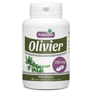 Olivier Feuille – 200 mg – 200 gélules