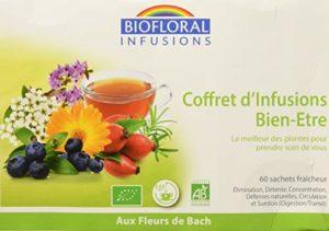 Biofloral Coffret de 60 Sachets Infusions Bio