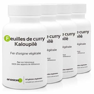 FER D'ORIGINE VÉGÉTALE (Kaloupilé) * PACK 3+1 GRATUIT * 233.5 mg / 240 gélules * Carences (hémoglobine), Energie (fatigue), Immunitaire * Garantie Satisfait ou Rembours * Fabriqué en France
