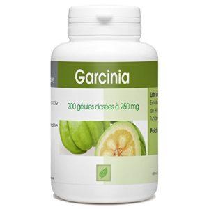 Garcinia Cambogia – 250 mg – 200 gélules