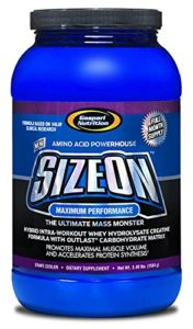 Gaspari Size On Max Performance 1.6kg – grain de raisin