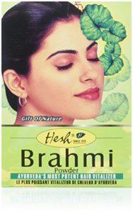 Hesh – Poudre de brahmi – lot de 2 boîtes de 100 g