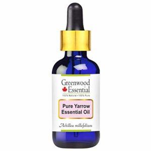 Huile essentielle pure Achillée Greenwood Essential (Achillea millefolium) avec compte-gouttes en verre 100% naturel de qualité thérapeutique distillé à la vapeur 5ml (0,16 oz)
