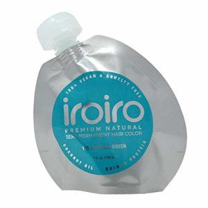 Iroiro Premium Naturel Semi Permanent Couleur de cheveux 115IRO Vert émeraude 113,4gram