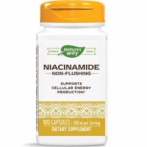 Nature's Way – Niacineamide 500 mg – 100 Capsules
