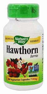 Nature's Way Complément alimentaire à base de baies d'aubépine – 100 capsules (510 mg)