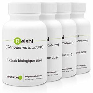 REISHI ROUGE BIO (GANODERMA LUCIDUM) * PACK 3+1 GRATUIT * 300 mg / 240 gélules * Cardiovasculaire, Energie (fatigue), Immunitaire * Garantie Satisfait ou Rembours * Fabriqué en France
