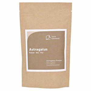 Terra Elements Astragale bio en poudre 100 g I 100% pure I vegan I qualité crue