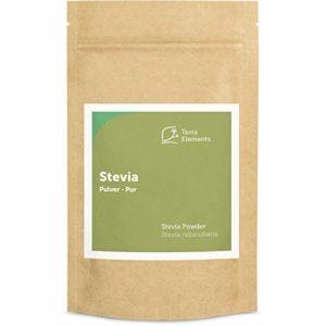 Terra Elements Stevia en poudre 100 g I 100% pure I vegan I qualité crue