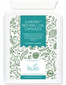 Capsules d'huile de krill rouge de 500mg – 60 gélules faciles à avaler – huile d'oméga 3 extra-forte pour un soutien maximal du coeur, de la pression artérielle, de la vision et du cerveau.