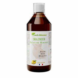 Draineur | Detox | Bruleur de Graisse | Perte de Poids | Minceur Efficace | Ventre Plat | Cellulite | 500ML | Goût Ananas | Un livret minceur Offert