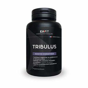 EAFIT Tribulus Testostérone 90 Comprimés